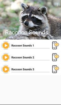 Raccoon Sounds apk screenshot
