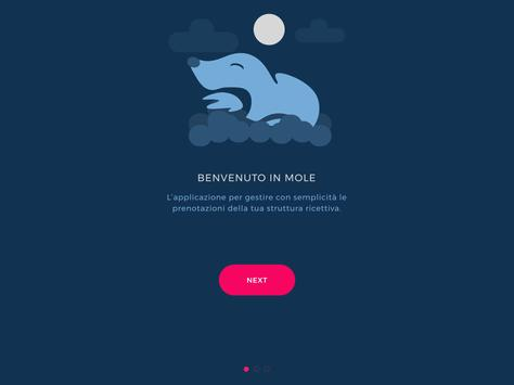 Gestionale Hotel B&B - Mole screenshot 7