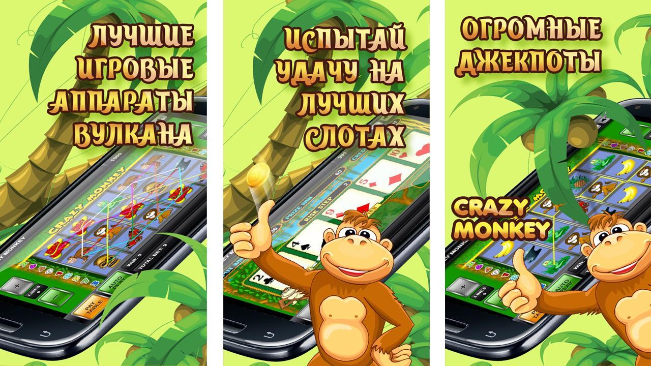 скачать crazy monkey slot