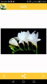 Flower Gifs screenshot 1