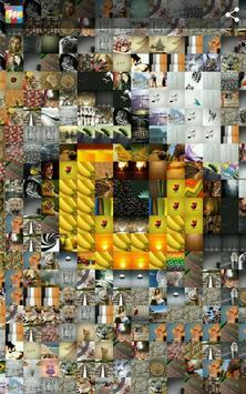 Mosaicture Lite - Photo Mosaic apk screenshot