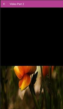 Atraksi Jaranan Setyo Budoyo Asik screenshot 1
