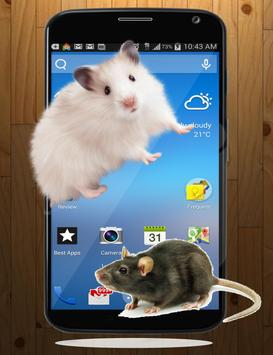 Mouse On Screen Scary Prank poster