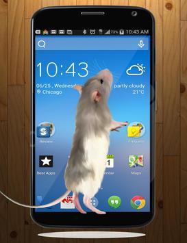 Mouse On Screen Scary Prank apk screenshot