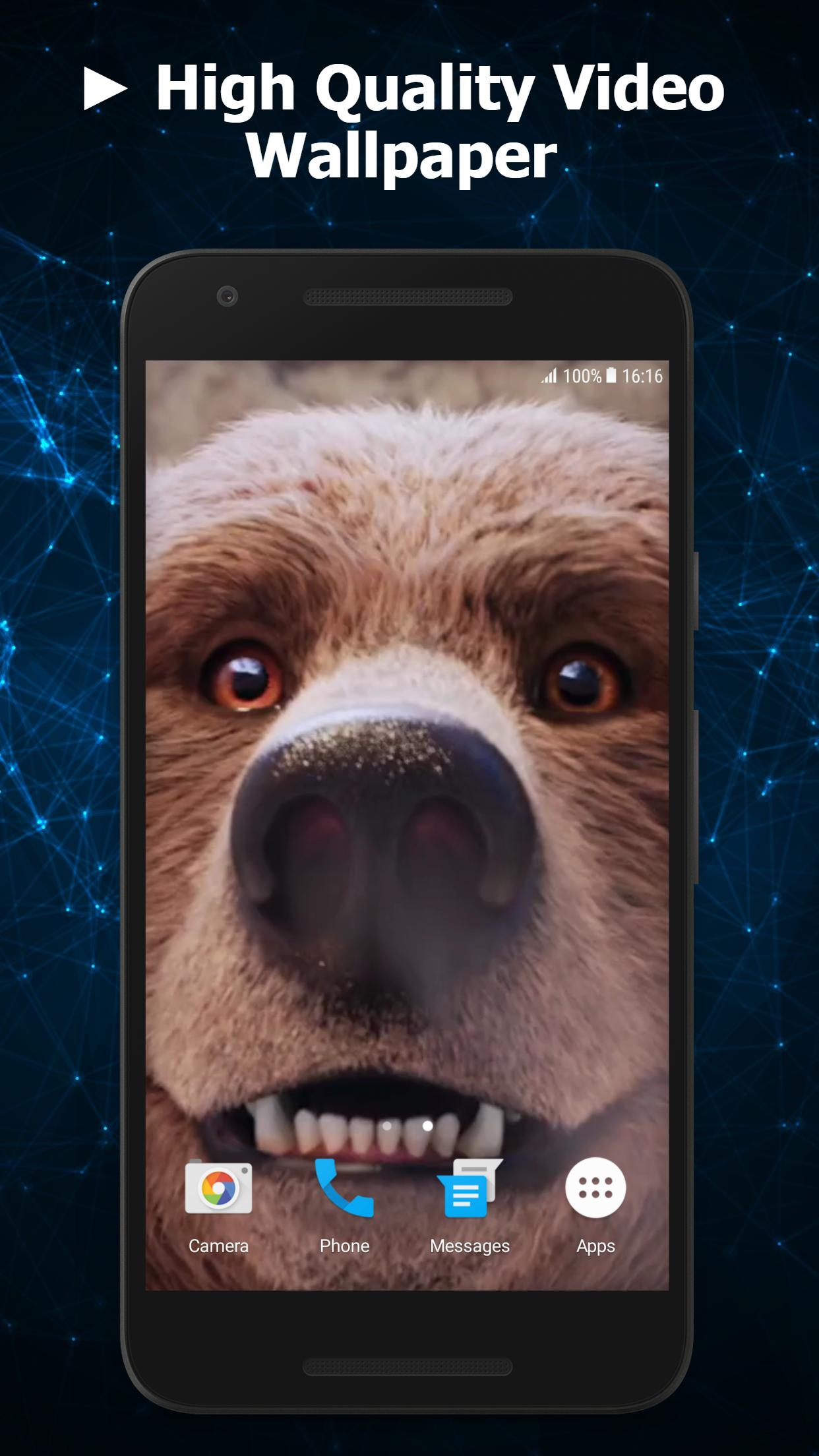 Cute Bear Video Live Wallpaper For Android Apk Download