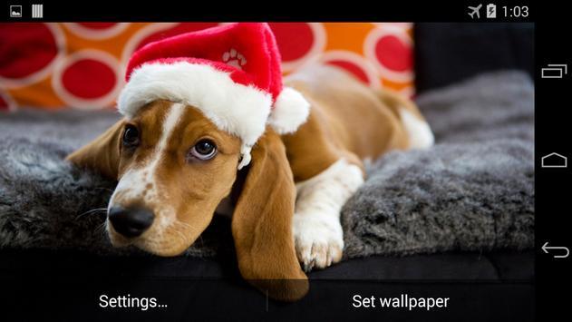Christmas Dog Live Wallpaper screenshot 2