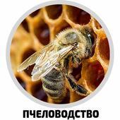Пчеловодство для начинающих icon