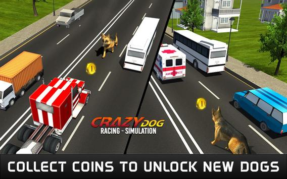 Crazy Dog Racing Simulation screenshot 14