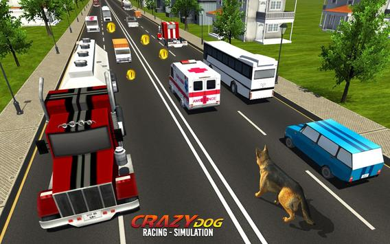 Crazy Dog Racing Simulation screenshot 1