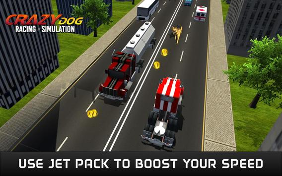Crazy Dog Racing Simulation screenshot 2