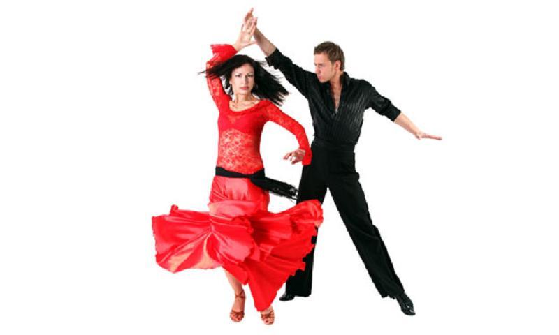 salsa download