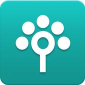 Songtree ikona