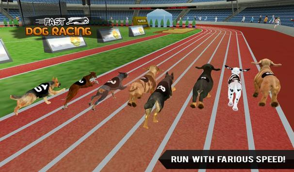 Fast Dog Racing 3D apk screenshot