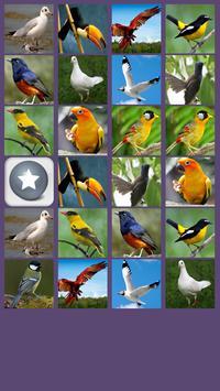 Aves Juego de Memoria captura de pantalla 2