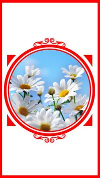 Daisy Ideas poster