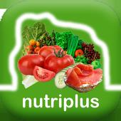 NutriPlus - NFT créateur icon