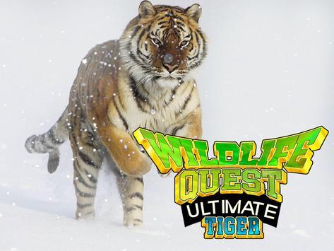Wildlife Quest Ultimate Tiger screenshot 7