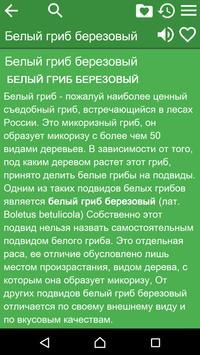 Справочник грибника беспл. apk screenshot