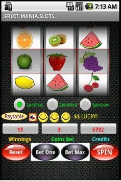 Fruit Mania Slots poster