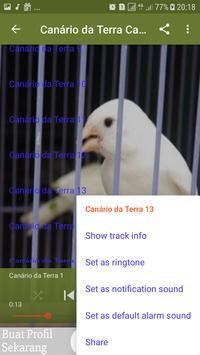 Canto De Canário da Terra New apk screenshot