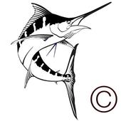 도시어부신2:네임드아트 icon