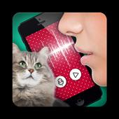 Cat translator joke icon