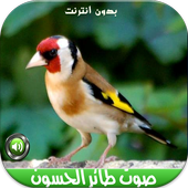 اصوات طائر الحسون بدون نتMP3 icon