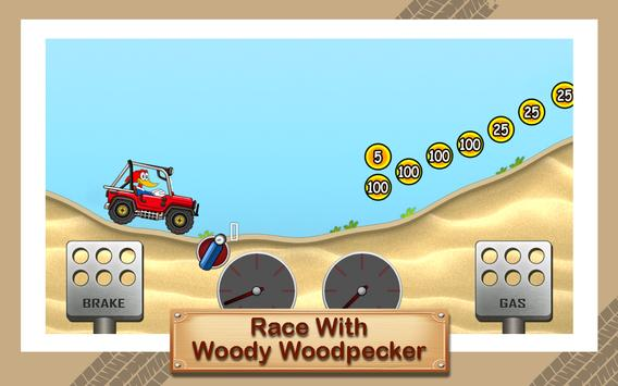 Hill Woody Racing Woodpecker poster