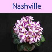 Nashville (Unreleased) icon