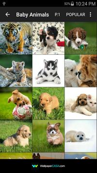 Animal Gallery screenshot 1