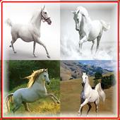 White Horse Game icon