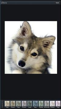 Photo Editor Pro – App poster