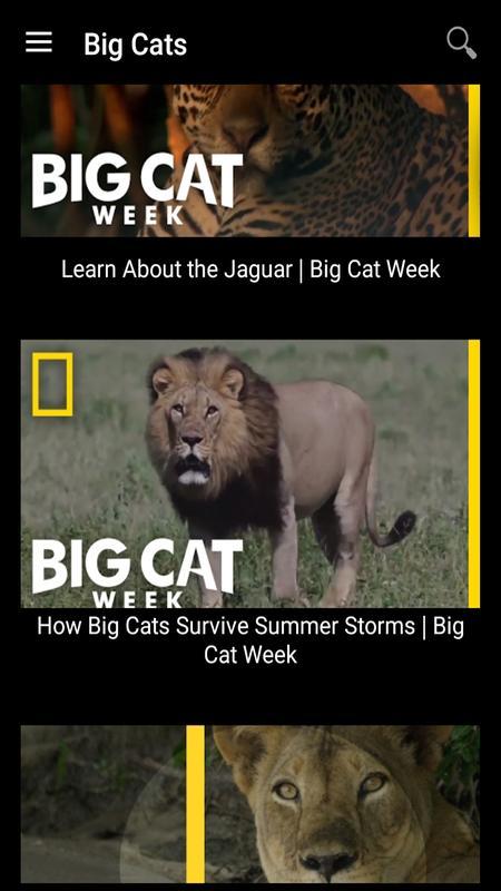 Watch ultimate predators videos online national geographic.