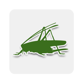 iRecord Grasshoppers icon