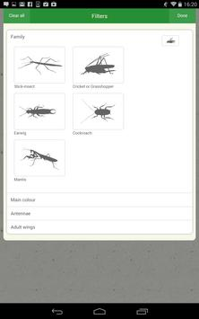 iRecord Grasshoppers apk screenshot