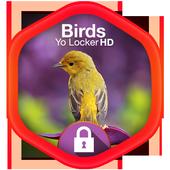 Birds Yo Locker HD icon