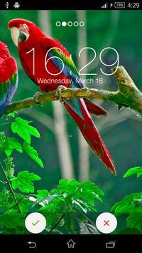 Birds Yo Locker HD poster