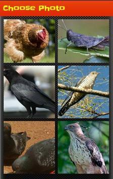 Nature Block Puzzle poster
