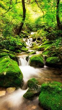 Nature Live Wallpaper Free poster