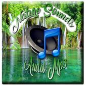 Best Nature Sound icon