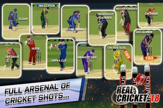 Real Cricket™ 18 स्क्रीनशॉट 4