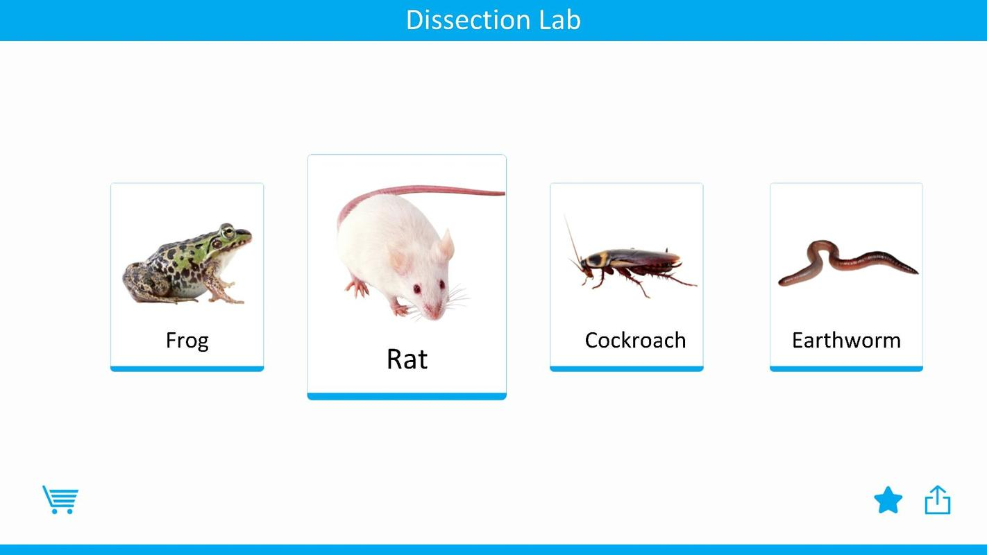Dissection Lab For Android Apk Download