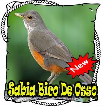 Canto Da Sabia Osso Mp3 poster