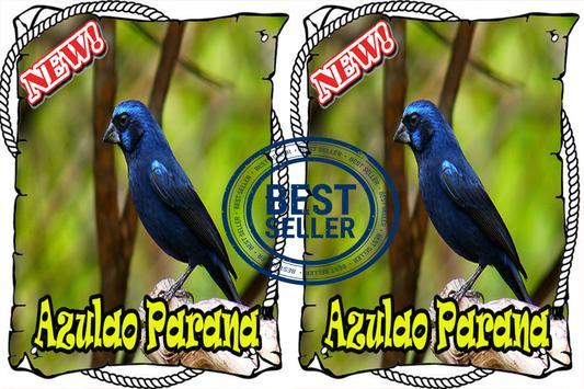 Cantos da Azulao Parana Brasilio Mp3 apk screenshot