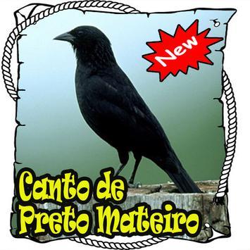 Cantos Da Preto Mateiro poster