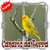 Cantos Canario da Terra Mp3 icon