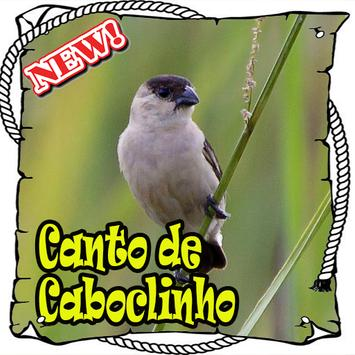 Canto Da Caboclinho Brasilios Mp3 apk screenshot