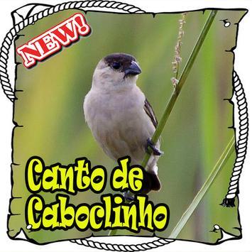 Canto Da Caboclinho Brasilios Mp3 poster