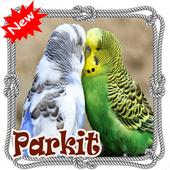 Suara Burung Parkit Terbaik Dan Terbaru Mp3 icon
