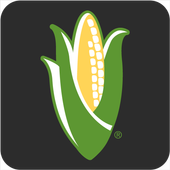NCGA Action icon